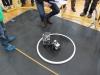 robotitsoorr2013-012