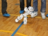 robotitsoorr2013-096