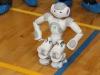 robotitsoorr2013-097