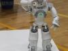 robotitsoorr2013-098